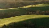 Winter sun over fields