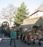Beer Wagon Horses