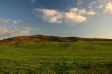 Colline Toscane