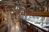 1213 Shop and Gallery Aad van der Hyde