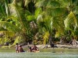 P519 Tahitians