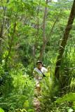 0955 Walk the dense forest