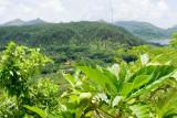 0967 Vista at Haapu Bay, Huahine-Iti