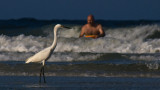 Bird and Boogie Boarder