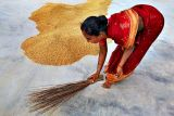 Sweeping the rice