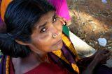A Tamil Lady