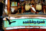 Intruders on the Kaangiendra Thevan