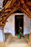 Old golden palm leaf house