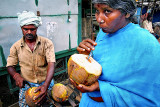 A Coconut, cheap and best
