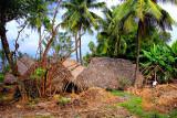 Farmer's palm leafs huts