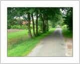 Typical Landscape