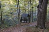 Trail Shelter