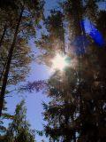 Lahamea National Park, Estonia