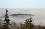 Fog over Burnaby and Vancouver