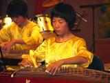 Chinese Zheng players