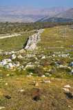 20061208-24.jpg
