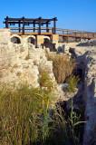 20061021-01.jpg