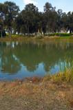 20070309-01.jpg