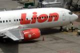 LION BOEING 737 400 SIN RF IMG_7820 .jpg