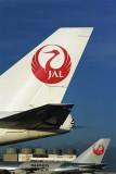 JAL TAILS NRT RF 1431 18.jpg