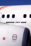 BOEING 737 800 RF IMG_1489.jpg