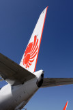 LION BOEING 737 900ER DPS RF IMG_1742.jpg