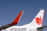 LION BOEING 737 900ER DPS RF IMG_1755.jpg