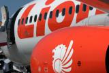 LION BOEING 737 900ER DPS RF IMG_1901.jpg