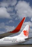 LION BOEING 737 900ER DPS RF IMG_1819.jpg