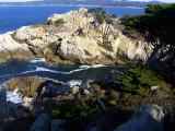 Point Lobos (Californie) - 2004