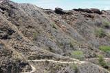 Diamond Head - Hiking Trail