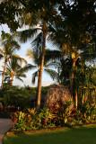 Old Lahaina Luau - Garden