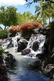 Oahu - Waterfall
