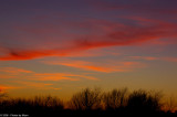 Sunset 7958.jpg