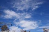 Sky 10429.jpg