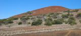 Manane Habitat