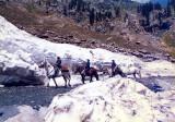 Ice on the Lowari Pass