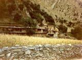 Kalashi houses