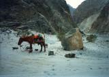 Karakoram Hwy rest spot
