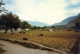 Gilgit-fields