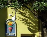 The Fairfax Scoop:  Organic Ice Cream