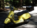 My New Vespa GTS 250ie:  Sunny Buttercup