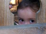 Peek-A-Booby Ed Lindquist