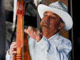 Ellegant Mexican Harp Playerby Marcelo Vieira
