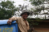 Ox-cart stuck on old Khmer bridge
