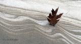 Snow, Sand Design