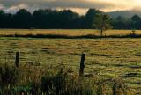 Barneveld Field