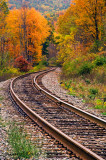 Autumn Along theTracks