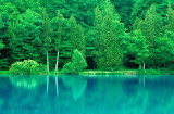 Green Lakes Reflections