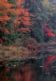Piseco Lake Reflections